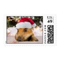 Sweet Pig In Santa Hat Christmas Tree Postage