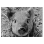 sweet piglet, black white cutting boards