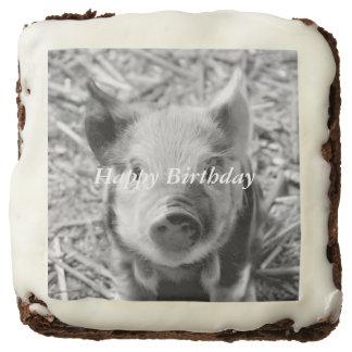 sweet piglet, black white square brownie