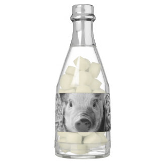 Sweet Piglet Chewing Gum Favors