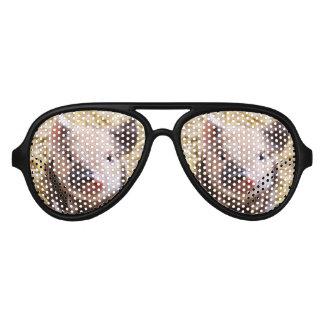 pig sunglasses pig eyewear designs zazzle