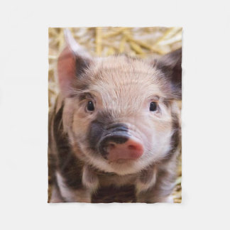 sweet piglet fleece blanket