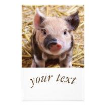 Sweet piglet flyer