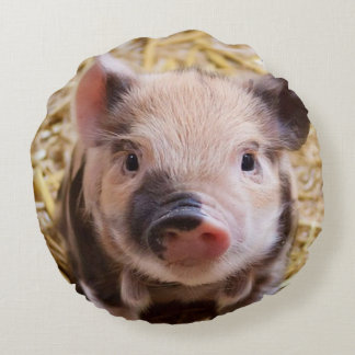 sweet piglet round pillow