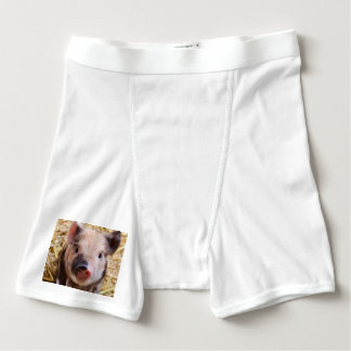 Sweet piglet boxer briefs