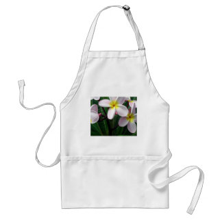 Sweet Pink and Yellow Plumeria Flowers Adult Apron