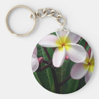 Sweet Pink and Yellow Plumeria Flowers Keychain