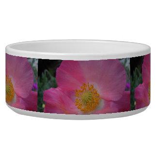 Sweet Pink Poppy Bowl