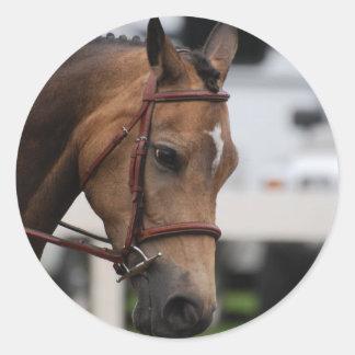 Sweet Pony  Stickers