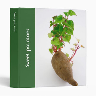 Sweet potato plant sprouts 3 ring binder