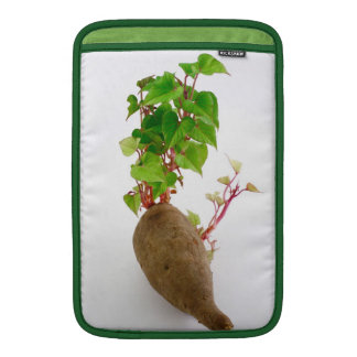 Sweet potato plant sprouts MacBook sleeve