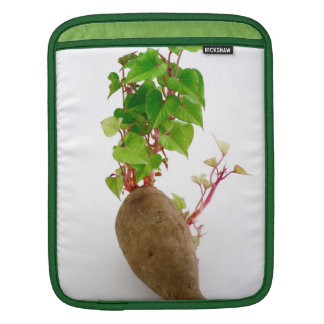Sweet potato plant sprouts iPad sleeve