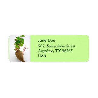 Sweet potato plant sprouts label