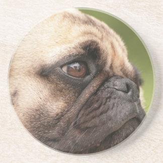 Sweet Pug Drink Coasters