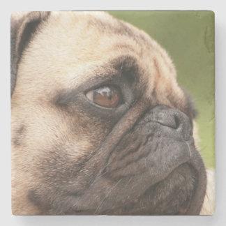 Sweet Pug Stone Coaster