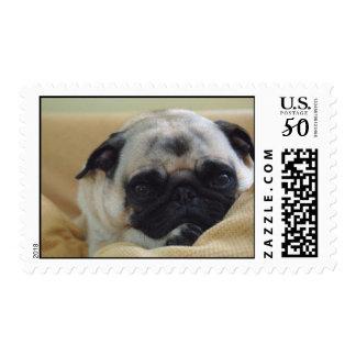 Sweet Pug Postage