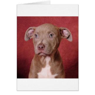Sweet pup greeting card