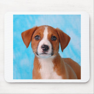 Sweet pup mouse pad