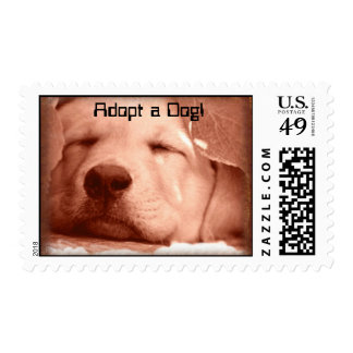 SWeet Puppy - Adopt a Dog Stamp