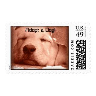 SWeet Puppy - Adopt a Dog Stamp