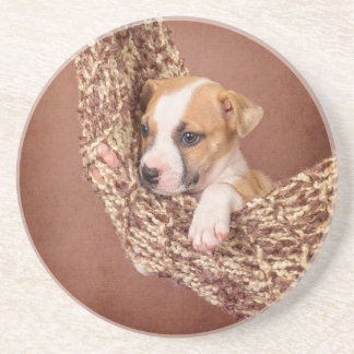 Sweet puppy drink coasters