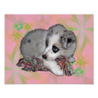 Sweet puppy on pink flowers. poster