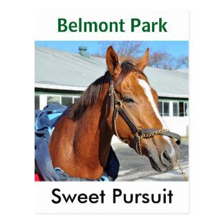 Sweet Pursuit by Posse Postcard