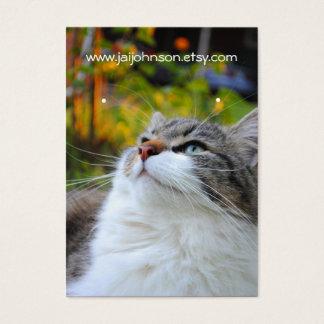 Sweet Ragdoll Cat Earring Cards