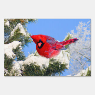 Sweet Red Cardinal In Snow Covered Tree Lawn Signs
