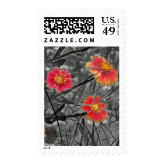 Sweet Red Flower Postage Stamps