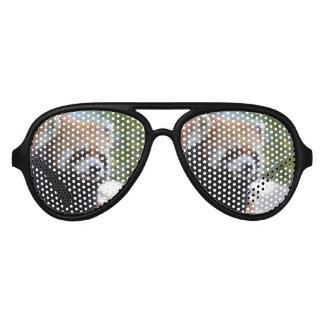 Sweet Red Panda Bear Aviator Sunglasses
