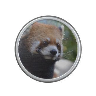 Sweet Red Panda Bear Bluetooth Speaker