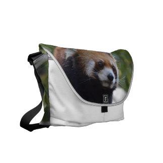 Sweet Red Panda Bear Courier Bag