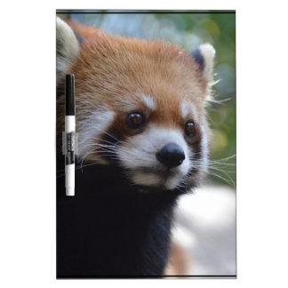 Sweet Red Panda Bear Dry Erase Board