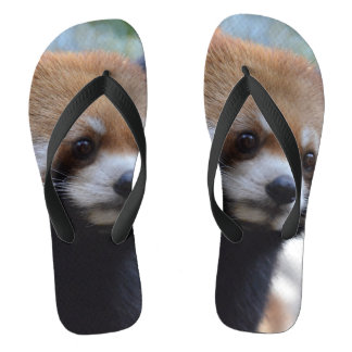 Sweet Red Panda Bear Flip Flops
