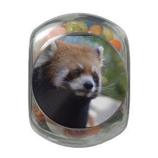 Sweet Red Panda Bear Glass Candy Jar