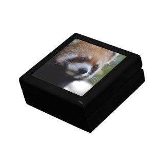 Sweet Red Panda Bear Jewelry Box