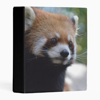 Sweet Red Panda Bear Mini Binder