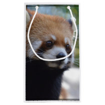 Sweet Red Panda Bear Small Gift Bag