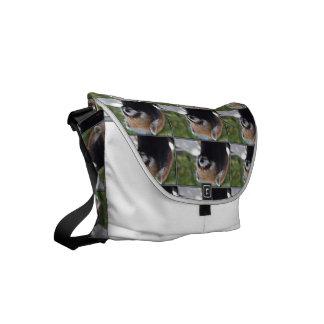 Sweet Red Panda Bear Small Messenger Bag