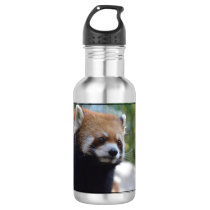 Sweet Red Panda Bear Water Bottle