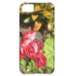 Sweet Red Roses Cover For iPhone 5C
