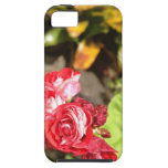 Sweet Red Roses iPhone 5 Cover
