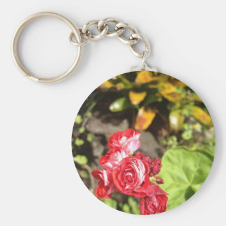 Sweet Red Roses Key Chains