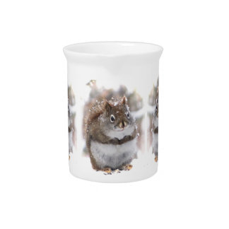 Sweet Red Squirrels Drink Pitcher