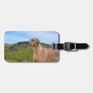 Sweet Rhodesian Ridgeback Dog Tags For Luggage