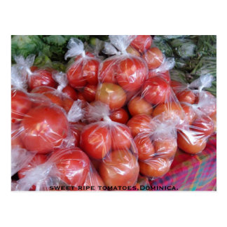 sweet ripe tomatoes,Dominica. Postcard