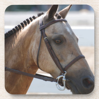 Sweet Roan Pony Coaster