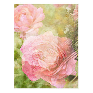 Sweet Roses Post Cards