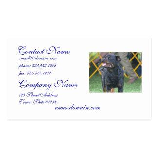 Sweet Rottweiler Business Cards